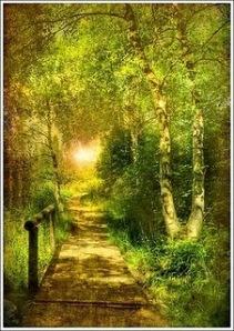 true+path.jpg